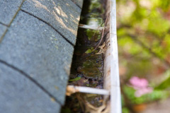 south carolina gutter cleaning services